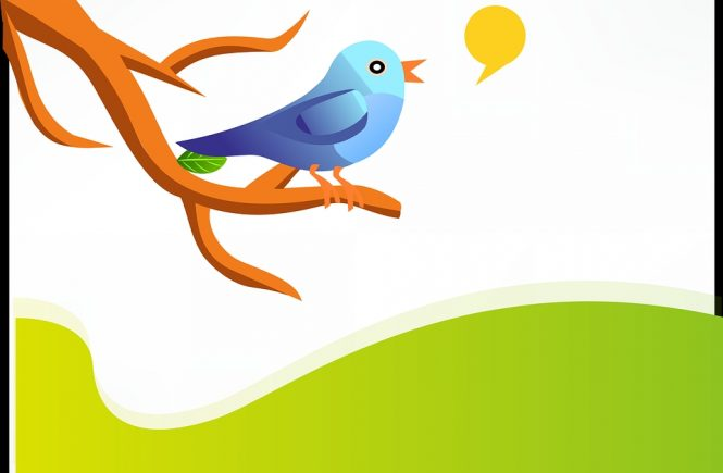 Smart Twitter Marketing Tactics